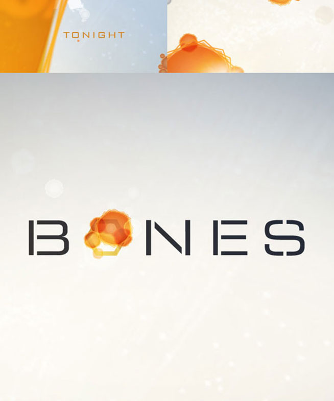 Fox-Bones Rebrand storyboards 03